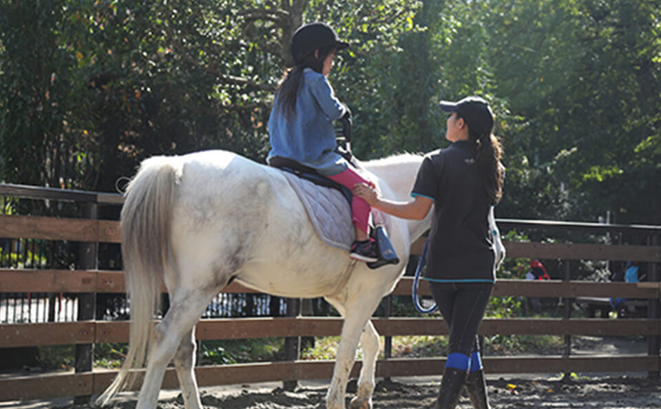 Pony Rider Skills Evaluation